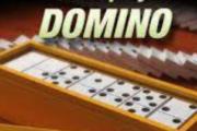 judi online Domino